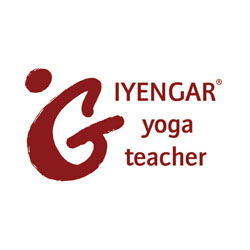 Iyengar Yoga Unterricht