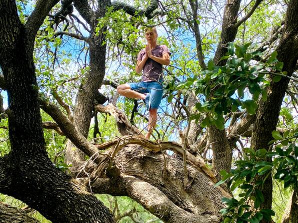 Vriksasana im Baum